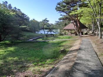 池へ続く道.JPG